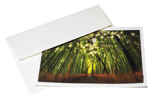 Red River Cards Aurora Art White 285gsm With Envelope 2