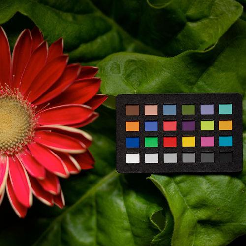 X Rite Colorchecker Nano Classic in use