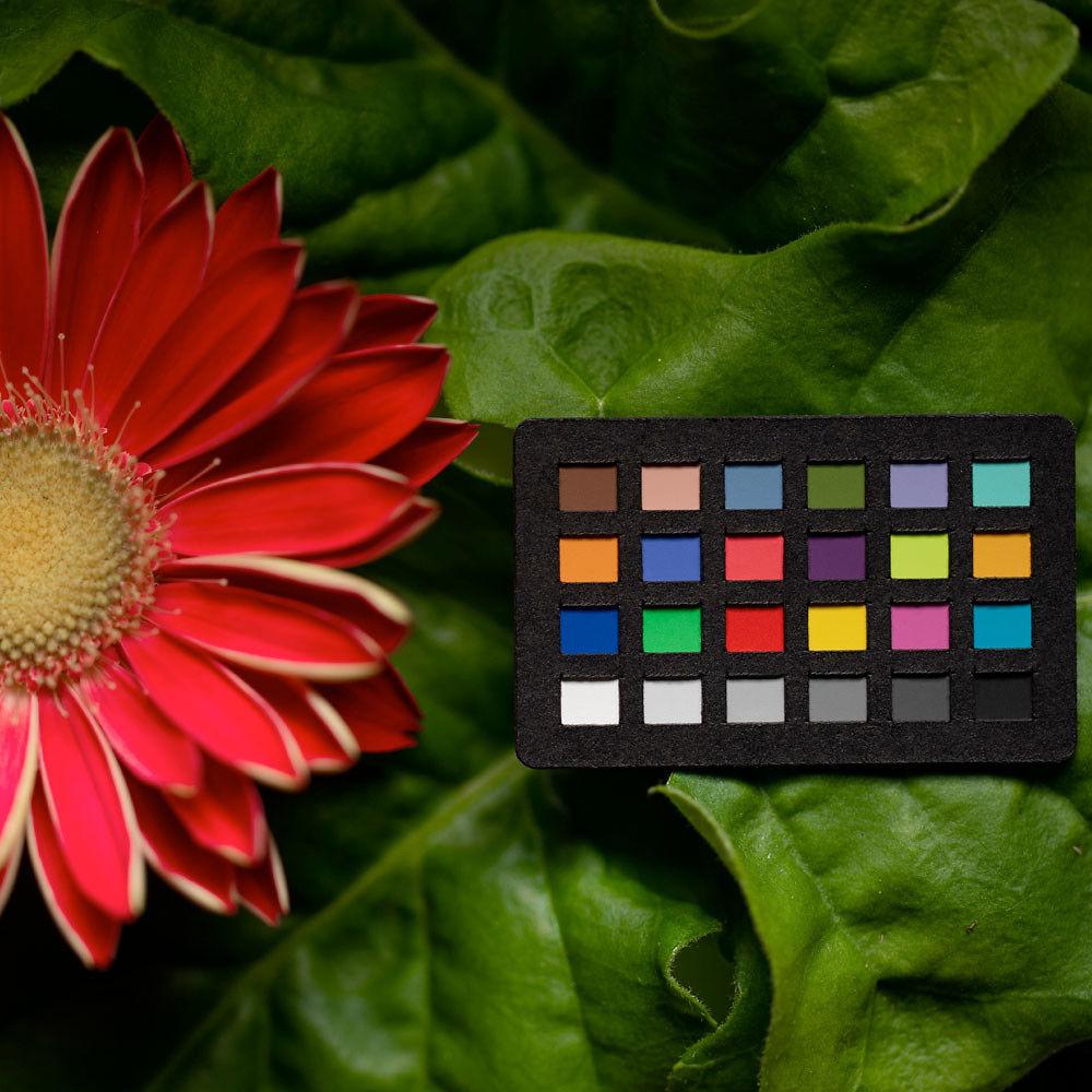 X-Rite ColorChecker NANO Classic Image