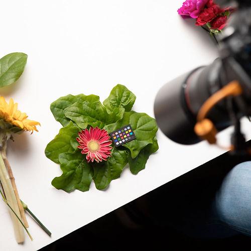 X Rite Colorchecker Nano Classic in use photoshoot