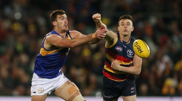 Adelaide defender to miss Suns clash