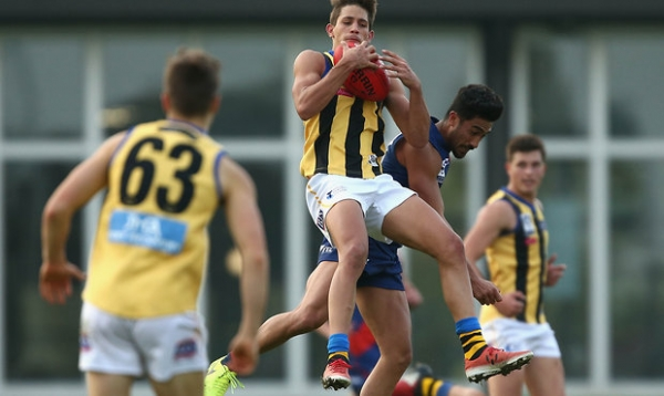 VFL Preview: Round 6 v Northern Blues