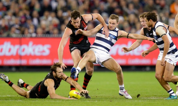 Shaw's preview: Dons v Eagles