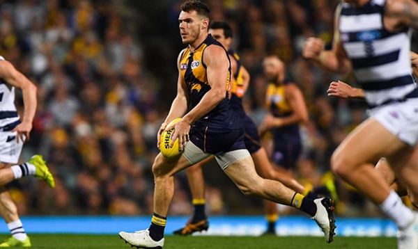 Shuey shines against Cats