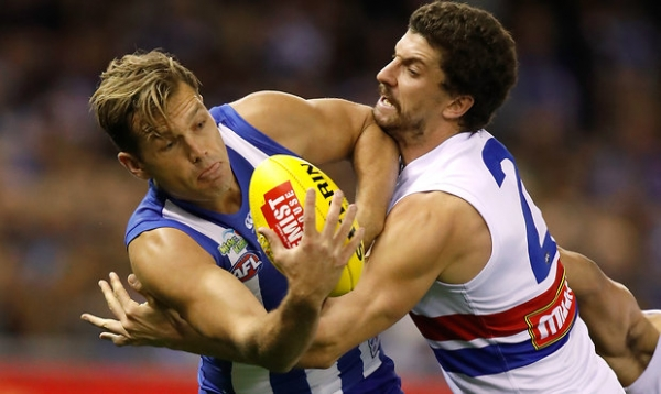 Match Information: Western Bulldogs v North Melbourne