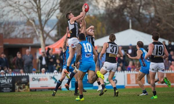 Magpies fall short at Unley