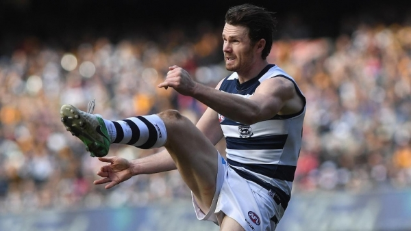 Cats coach defends Danger's pain threshold