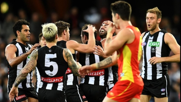 Pies ease pressure on Buckley with AFL win