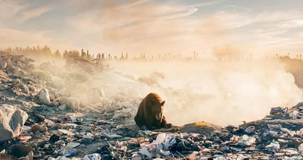 Photographer's heartbreaking pic should make us all feel bad right now