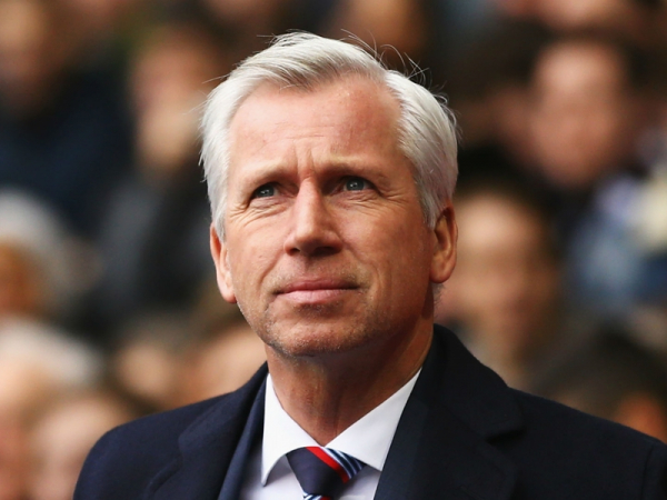 Alan Pardew backed in to become West Bromwich Albion manager after Tony Pulis departure