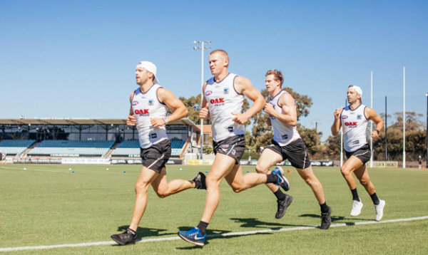 Last open training session for 2017