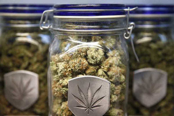 One million pounds of marijuana expected to be sold in California this year