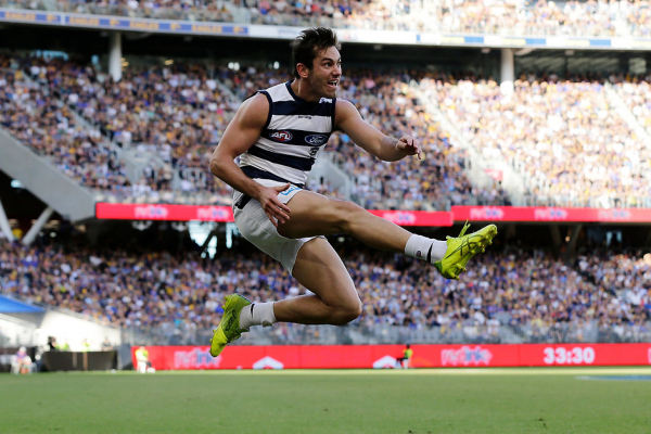 Cats star's groin injury opens door for ex-Don
