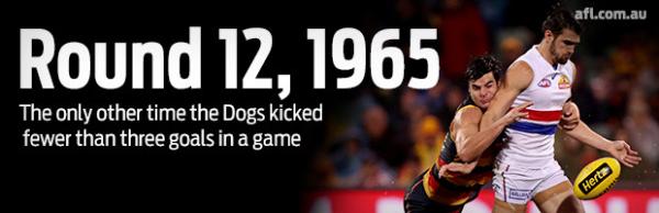 Slide rule controversy, Dogs' rare low score