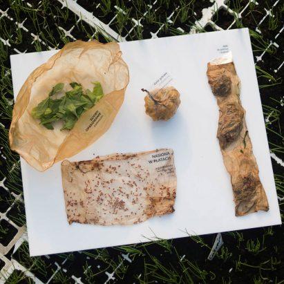 Roza Janusz grows edible food packaging
