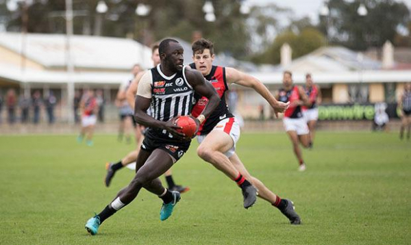 Magpies outworked by West: Lokan