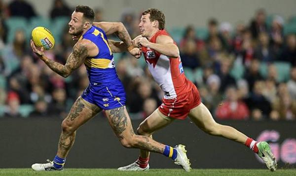 Valiant Eagles fall short against Swans