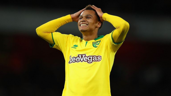 Cardiff sign Murphy from Norwich