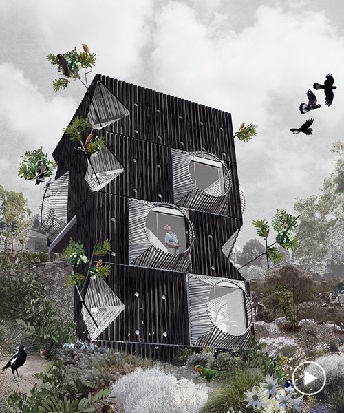an ornithologist's dream: this home is entirely engineered around bird watching