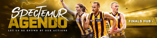 VFL preview: First year Hawks