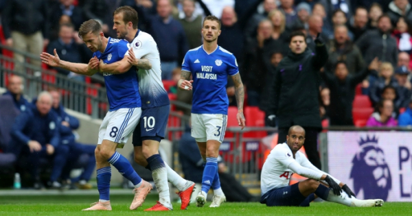Cardiff manager denies calling 'tremendous' Kane a 'tw*t'