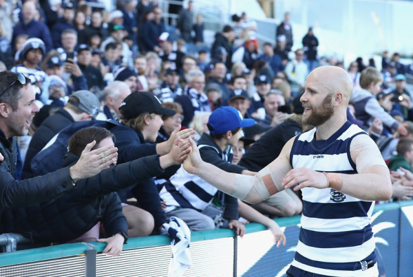 Cats members to fork out more money in 2019 after review