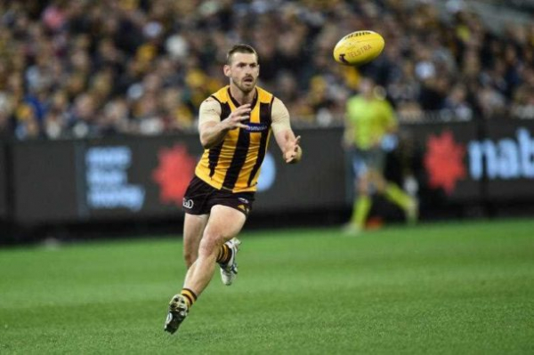 Ex-Hawks lands role at North