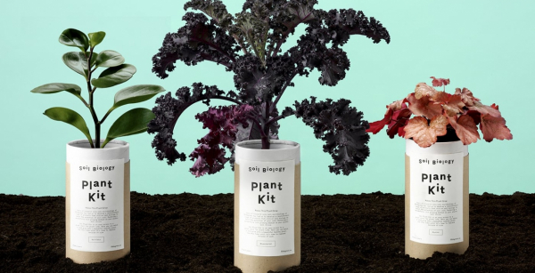 Soil Biology Branding