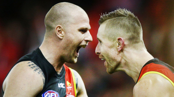 Tale of the tape for your AFL team in 2019: Essendon
