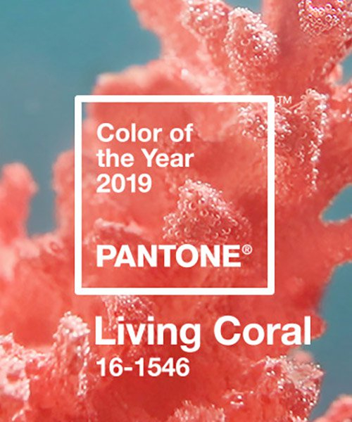 pantone announces 'living coral' as 2019 color of the year