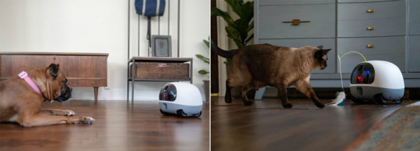 the VAVA pet robot keeps your animals company whilst you're away