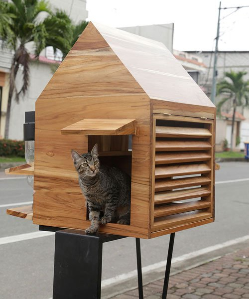 natura futura arquitectura builds little shelters for homeless pets in babahoyo, ecuador