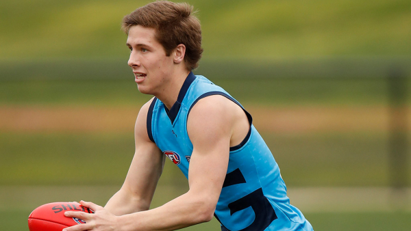 Surgery sidelines Cats youngster for start of season