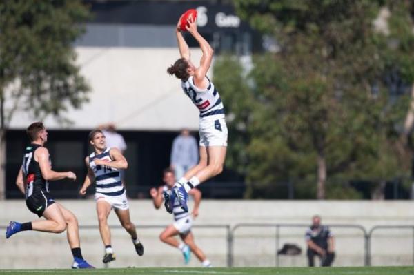 Big men solid in Cats VFL win