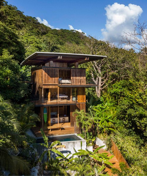 tom kundig builds surfers treehouse using local teak wood in costa rica