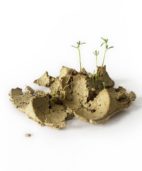 'biopack' by george bosnas is packaging made from seeds that grow when planted