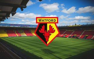 Watford star SUSPENDED by the club after getting into brawl at Royal Ascot