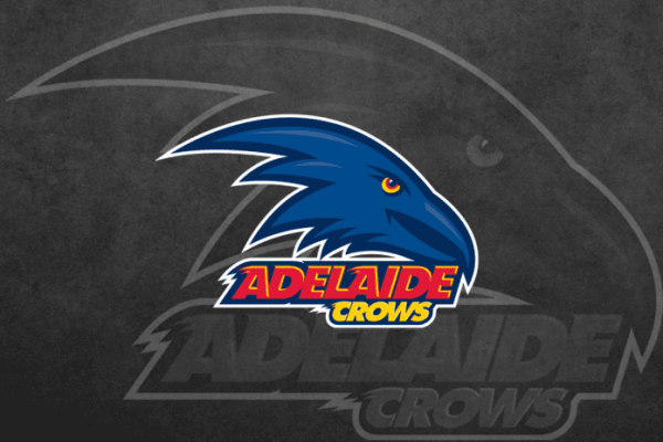 Crows release four-man panel to aid in coaching search