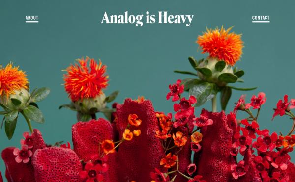 Analog is Heavy