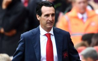 Unai Emery issues positive update on Arsenal summer signing