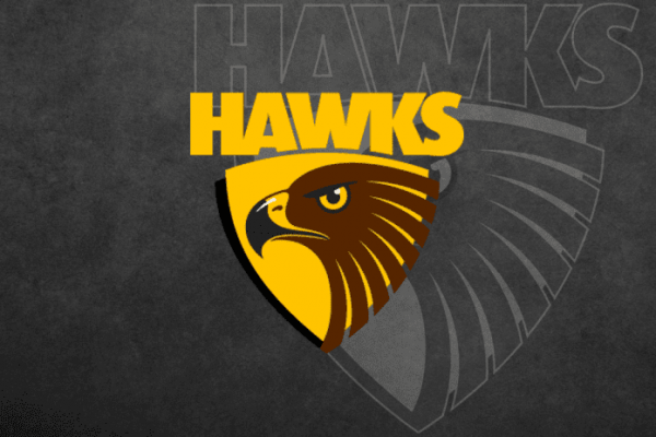 Hawks interested in Irish rugby prospect