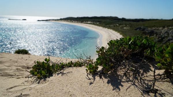 Concerns For Coastal Cast-Off