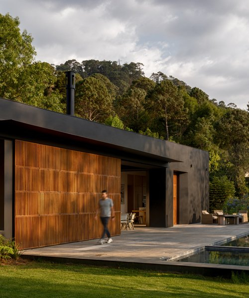 PPAA designs 'las golondrinas' house as a composition of matte black and timber geometries