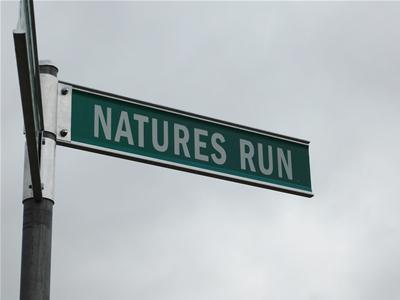 Natures Run-John Elliot-21 Blocks 002.JPG