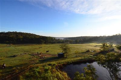 Timber yurt view (002).jpg
