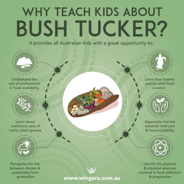 why teach kids bush tucker