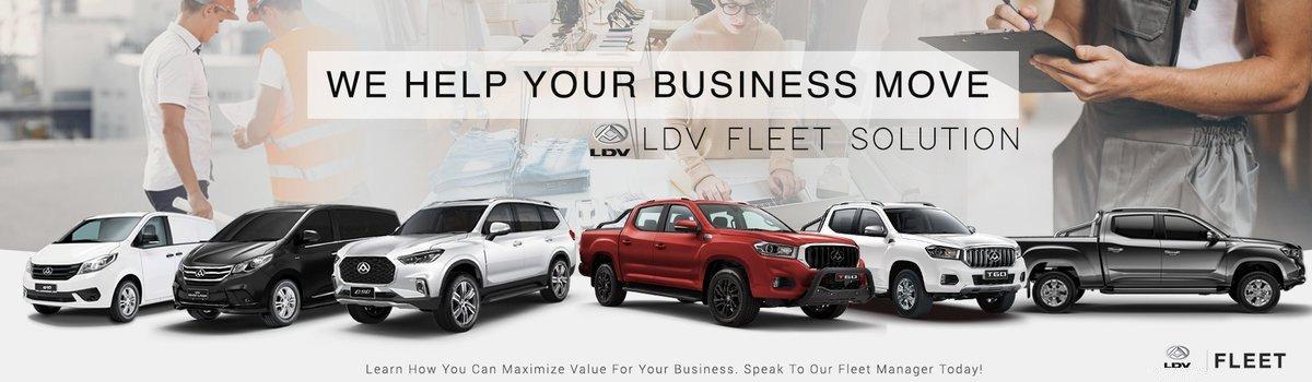 ldv_fleet_solution
