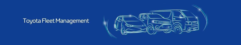 Fleet   Waverley Toyota