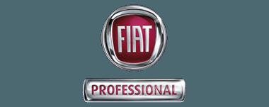 McCarroll's Fiat Professional