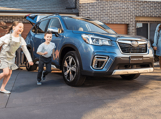 Discover the Subaru Forester